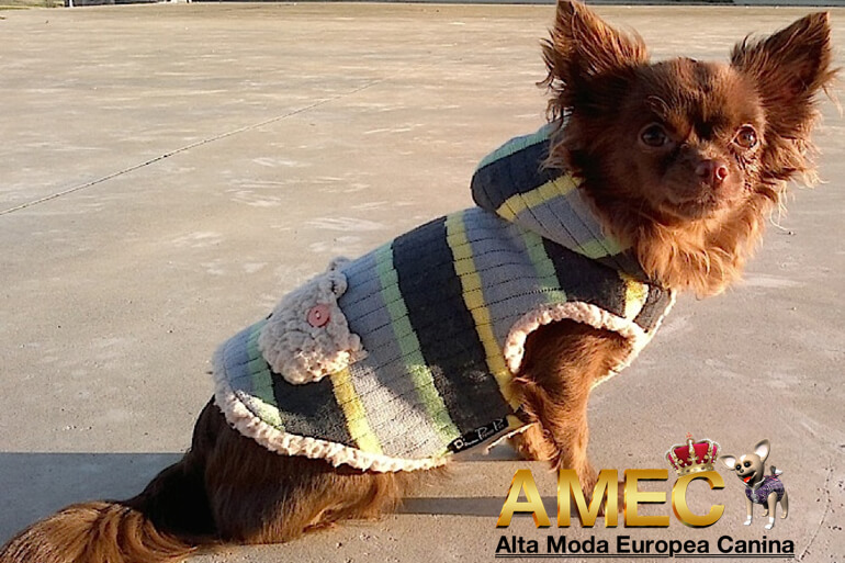 ela-jersey-borreguito-gris-perros