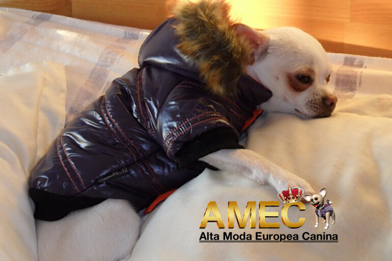 abrigo-impermeable-perros