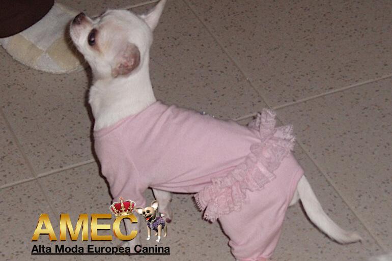 pijamas-perros-hembra