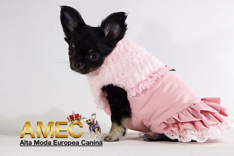 ropa-perros-alta-calidad