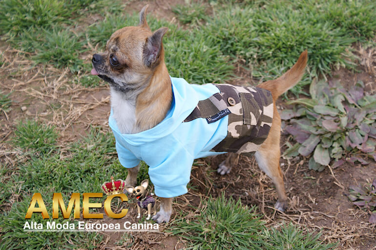 outlet-ropa-perros
