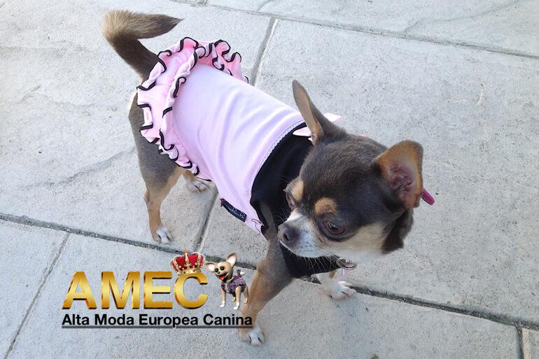 contra-reembolso-ropa-perros