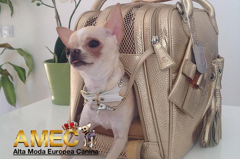bolsos-exclusivos-perros