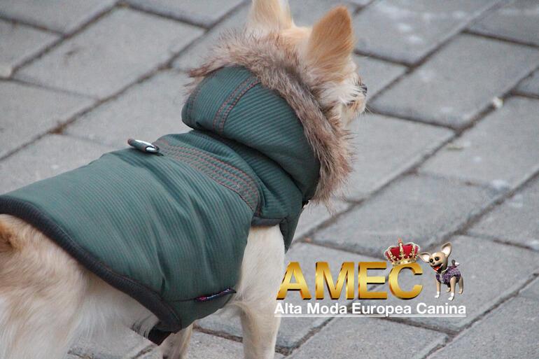 abrigo-ropa-perros