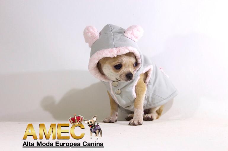 nuevos-abrigos-perros