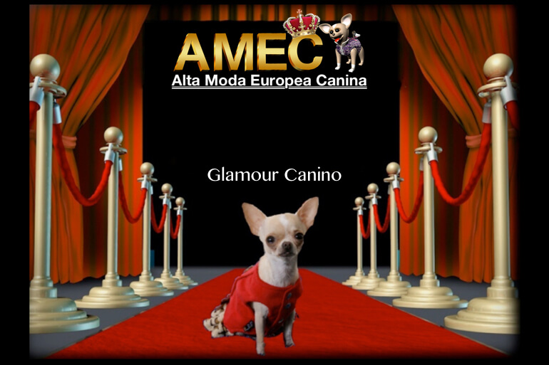 glamour-canino