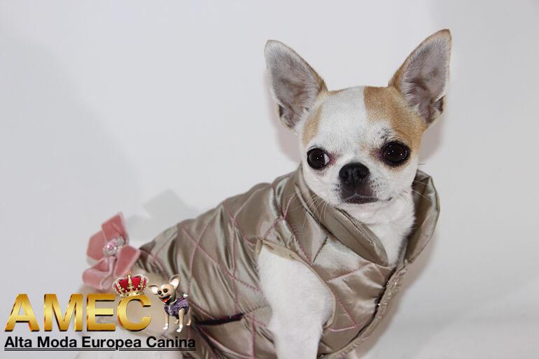 abrigos-perros-acolchados