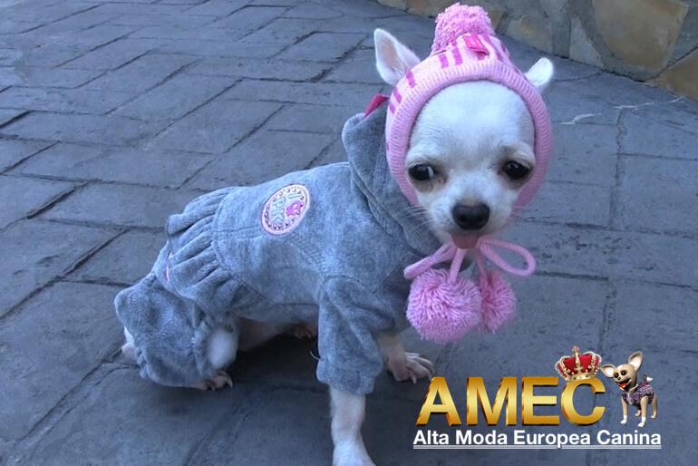 ropa-para-perros