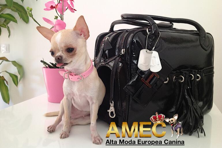 bolsos-lujo-perros