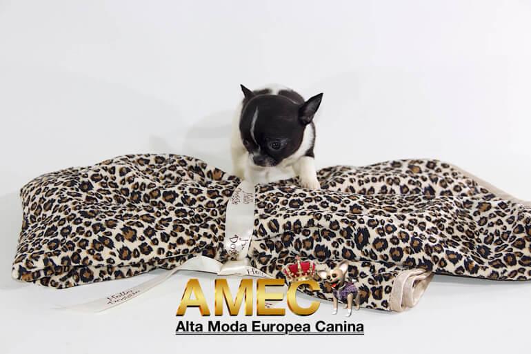 manta-perros-leopardo