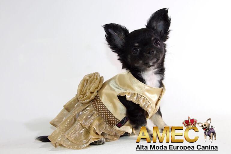 vestidos-para-perros