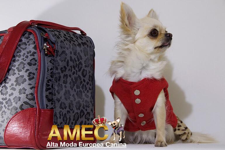 bolsos-de-viaje-para-perros
