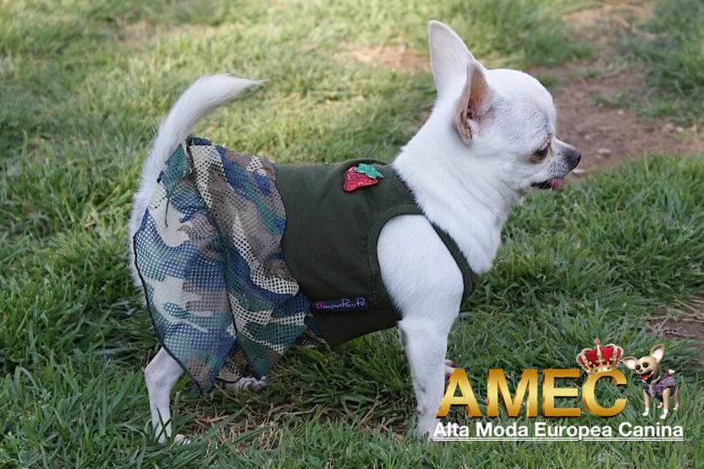 moda-canina-verano
