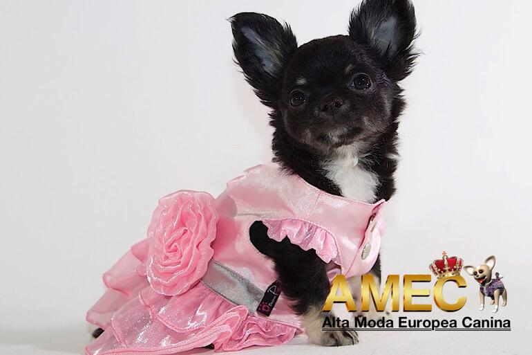 vestidos-para-perros-hembras