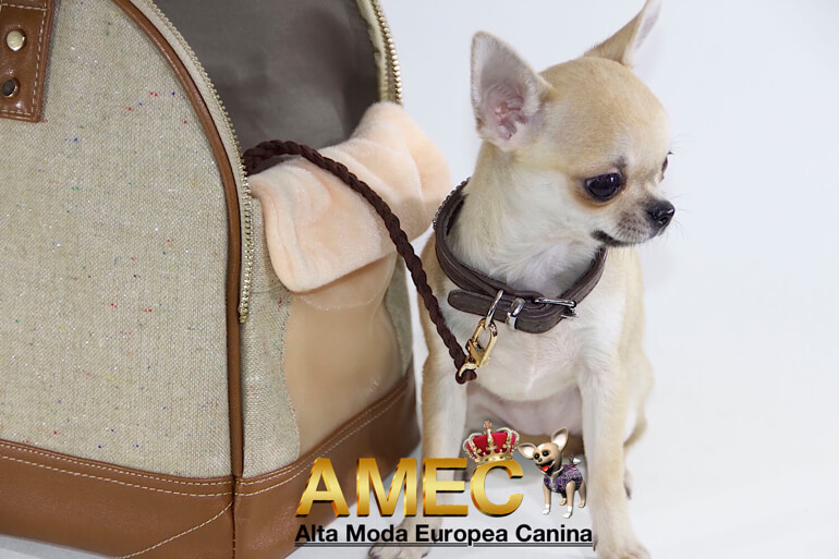imagenes-bolsos-perros