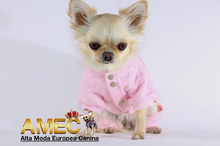 pijamas-para-perros