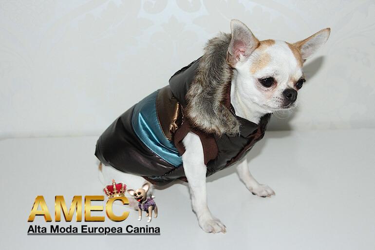 ropa-de-abrigo-para-perros