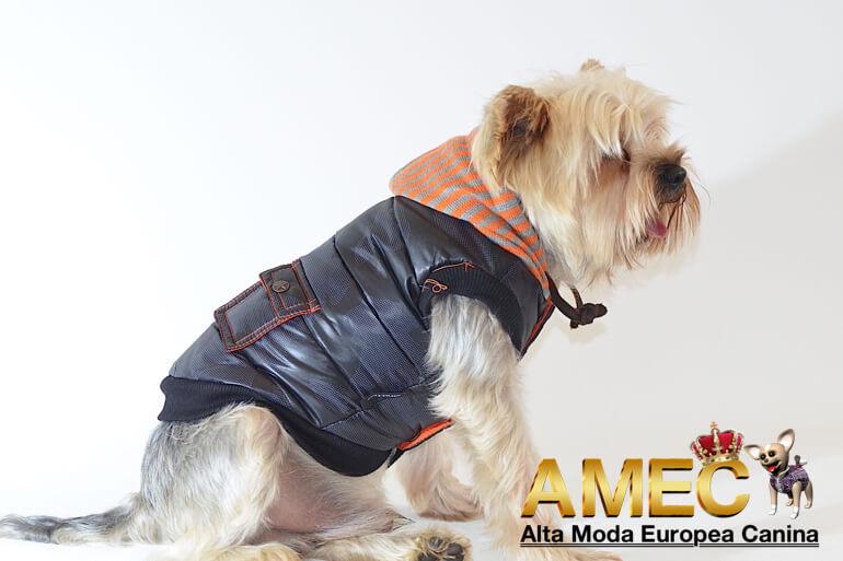 ropa-perros