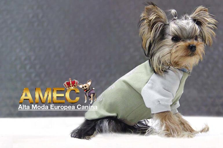 alta-moda-canina