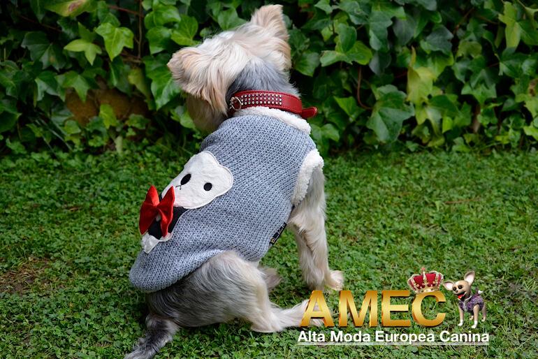 jerseys-para-perros