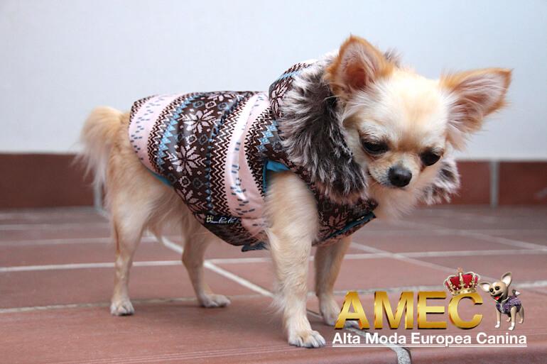 ropa-perros-coleccion-otoño-invierno