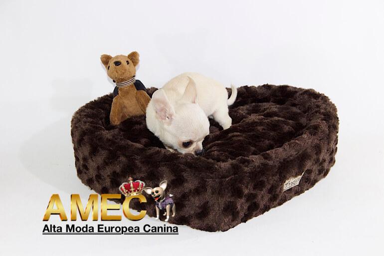 camas-para-cachorros