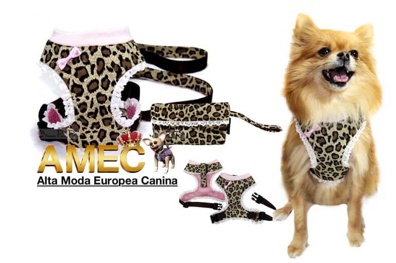 ropa-accesorios-perros-razas-pequenas