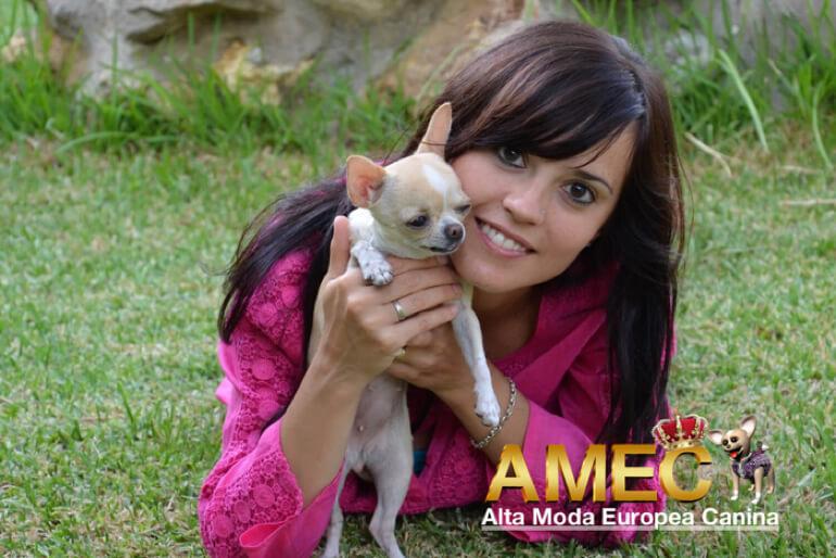 blog-moda-canina
