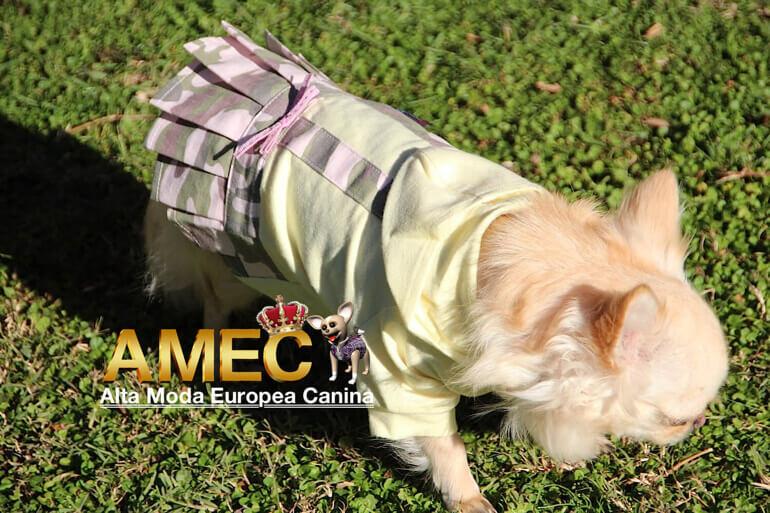 moda-canina