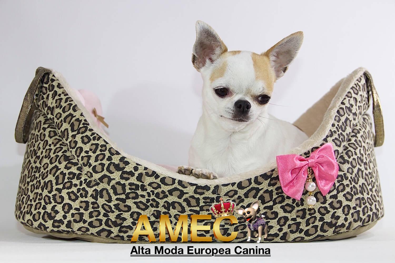 Alta Moda Europea Canina